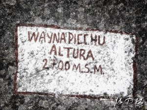 Wayna-Picchu-2700m-above-sea-level
