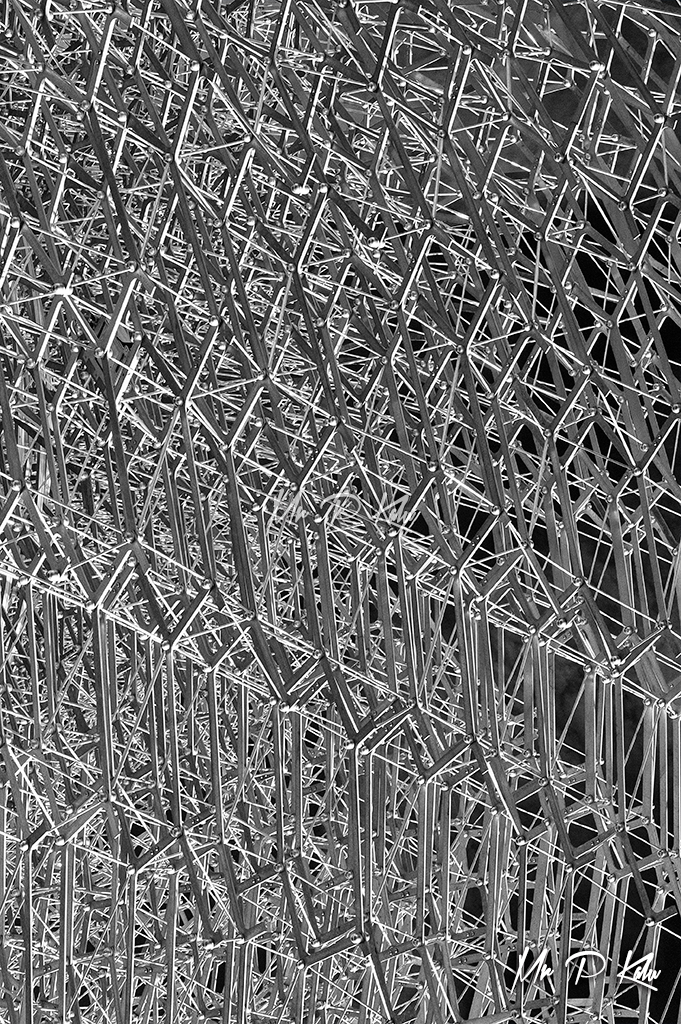 Black and white image of the intricate lattice work of steel making up the Hive, Royal Botanic Gardens, Kew